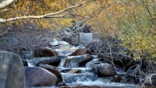 رودخانههای افغانستان