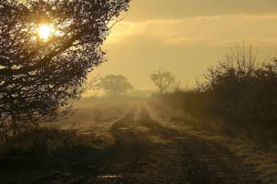 Farm track on a misty November morning in Berkshire