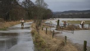 Firemen rescue sheep from floodwater.