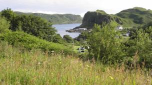 Camp site in Oban