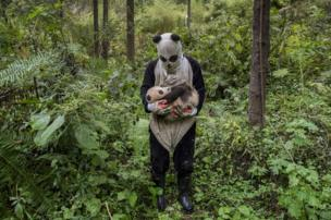 A man in a panda suit holds a panda
