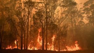 Incêndio na vila de Moyura, em Nova Gales do Sul, Austrália.