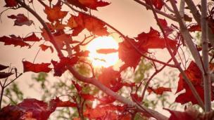 Red sun over Farmoor