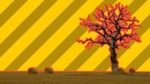 Farm wit balez n' ominous tree