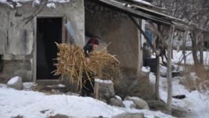 Чек арада кыргыздар менен тажиктер аралаш жашап, үйлөр кыйма-чийме салына берген.