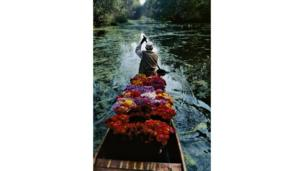 Vendedor de Flores en el Lago Dal, Flower Seller at Dal Lake, cortesía de Magnum Photos