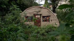 An overgrown hut