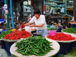 Person with red and green chillies