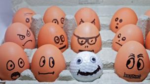 مجموعات من البيض عليها رسومات مختلفة