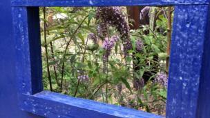 Triển lãm hoa Hampton Court