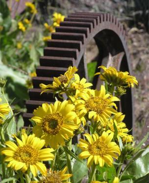 Un molino de metal al lado de flores salvajes.