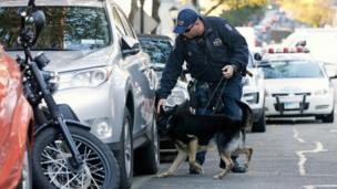 ડોગ સ્કવૉડની મદદથી તપાસ કરતા પોલીસ અધિકારી