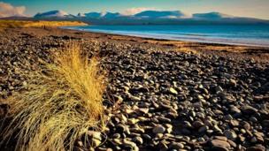 Bleddyn Jones-Pearson took this snap of Llanddwyn Beach, on the Anglesey coast