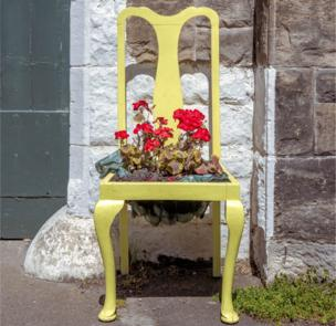 A chair with a bunch of flowers growing out of it, Northumberland, UK