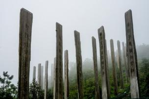 in_pictures Wooden columns