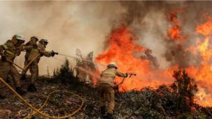 حريق الغابات في البرتغال