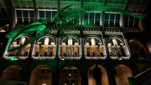 Blue whale skeleton in London's Natural History Museum