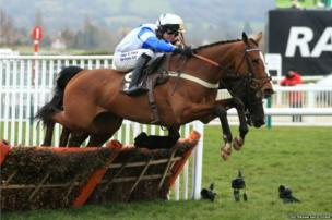 A picture of a racing horse and jockey, posted on Twitter by Cheltenham Racecourse, as part of the #blueforBonnie campaign