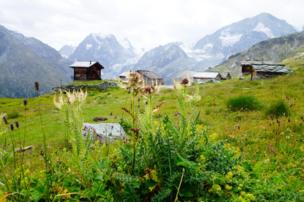 Small wooden huts in the Swiss landscape