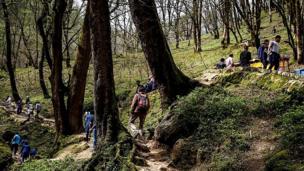 پیاده روی در دل جنگل های شمال