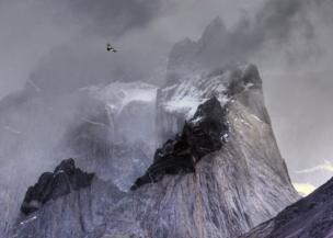An Andean condor flies over mountains