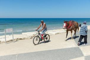 A horse walks behind a man on a bike