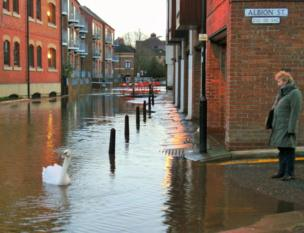 A woman watches as a swan swims past a flooded street