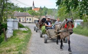 People ride on a horse and carriage carrying hay