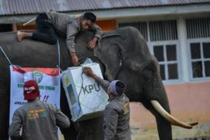 Seçim afişlerinin de asıldığı fillerin sırtındaki görevliler, 809 binden fazla seçim sandığını hazırlamak zorunda.