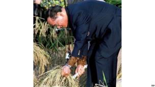1992 साली विद्रोही जनरल सुचिंद क्रपरायनू यांनी प्रधानमंत्री बनण्याचा प्रयत्न केला आणि त्यांच्या विरोधात झालेल्या प्रदर्शनांवर गोळ्या चालवण्यात आल्या. यानंतर राजाने सुचिंद आणि लोकतंत्राचं समर्थन करणारे नेते चामलंग श्रीमुआंग यांना राजशाही परंपरेचं पालन करत गुडघ्यावर चालत राज दरबारात हजर राहण्याचं सागितलं. प्रधानमंत्री थाकसिन शिनावाट यांच्या कारकीर्दीत अनेक वेळा राजाला हस्तक्षेप करण्यासाठी सांगण्यात आलं, पण त्यांनी ते टाळलं. एप्रिलमध्ये झालेल्या निवडणुका थाकसिन जिंकले होते. पण, न्यायालयाने त्यांना रद्दबातल ठरवलं होतं.