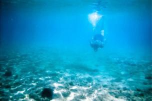 An underwater diver / అండర్ వాటర్ డైవర్