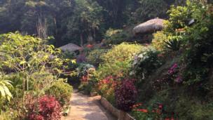 Bản Hmong ở Doi Pui nằm cách thành phố Chiang Mai của Thái Lan chỉ 15km