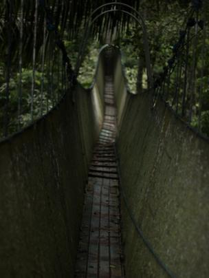 in_pictures Bridge in Peru