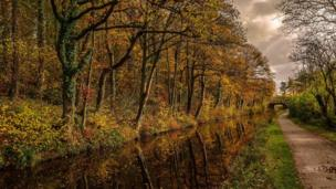 Autumnal splendour on the Brecon and Monmouth canal, captured by Martyn Jenkins