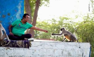 बंदर का खाना खिलाता एक व्यक्ति