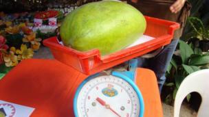 A giant Mango