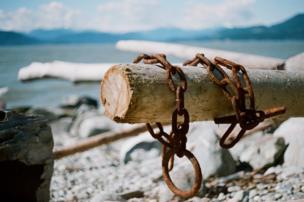 Una cadena oxidada en tronco de madera