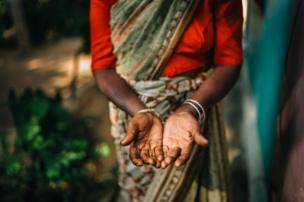 عاملة شاي وعلى يدها علامات تشير إلى قسوة بيئة العمل.