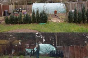 @cissyb1503 on Instagram posted her greenhouse before and after Storm Katie hit in Fleet, Hampshire.