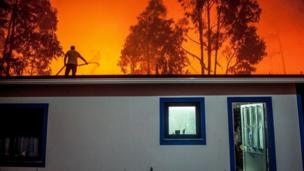 A man tries to fight a forest fire from the roof of his house in Vieira de Leiria, Marinha Grande, Portugal, 16/10/2017