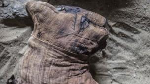 Мумия кошки в могильнике Хуфу-Имхата