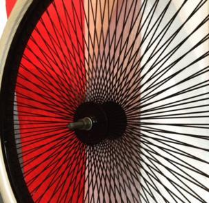 Imagen de los radios de una rueda de bicicleta.