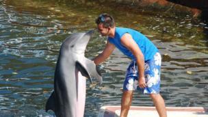 Entrenador hablando con un delfín.