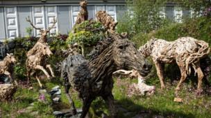 Driftwood sculptures of animals by sculptor James Doran Webb