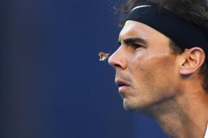 فراشة حطت على أنف لاعب التنس الإسباني رافاييل نادال