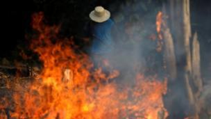 Un hombre trabaja en una granja en Irandula, estado de Amazonas, Brasil, el 20 de agosto.