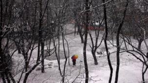 दक्षिणी कश्मीर के त्राल इलाके में बर्फ़ से घिरी वादियों के बीच रंगीन छाता लेकर चलती एक लड़की