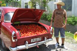 Un carro lleno de tomates.