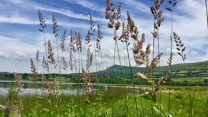 Llangorse Lake in Powys