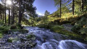 A mountain stream in the Ogwen Valley